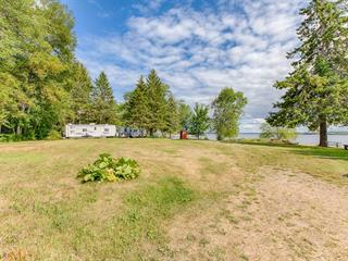 House for sale in L'Isle-aux-Allumettes, Outaouais, 17, Chemin  Baptiste-Roy, 10108407 - Centris.ca
