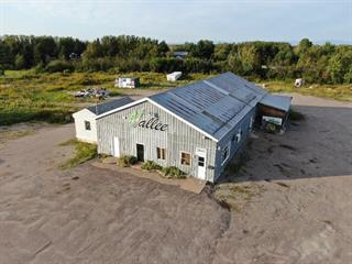 Farm for sale in Saguenay (Chicoutimi), Saguenay/Lac-Saint-Jean, 3841, Rang  Saint-Paul, 25008191 - Centris.ca