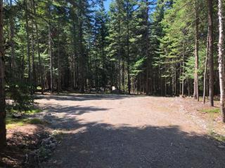 Terrain à vendre à Lantier, Laurentides, Chemin du Lac-Cloutier, 18156226 - Centris.ca