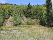 Terrain à vendre à Saint-Philippe-de-Néri, Bas-Saint-Laurent, Route  230 Est, 28050100 - Centris.ca