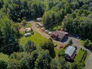 Maison à vendre à Lac-Brome, Montérégie, 34A - 34B, Rue  Ball, 10124095 - Centris.ca