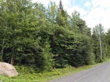 Terrain à vendre à Eastman, Estrie, 37, Rue de Ville-Bois, 18539542 - Centris.ca