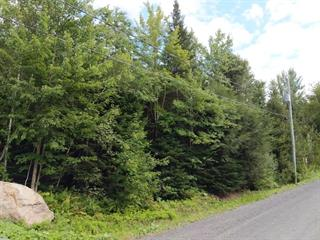 Lot for sale in Eastman, Estrie, 37, Rue de Ville-Bois, 18539542 - Centris.ca