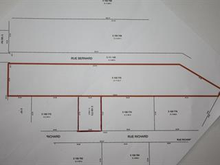 Lot for sale in Chertsey, Lanaudière, Rue  Richard, 16396104 - Centris.ca
