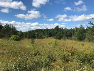 Land for sale in Senneterre - Paroisse, Abitibi-Témiscamingue, Chemin  Croinor, 11197541 - Centris.ca