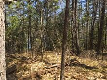 Land for sale in Sheenboro, Outaouais, Rue  Non Disponible-Unavailable, 20710508 - Centris.ca