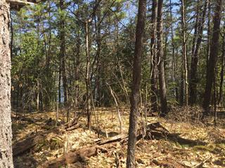 Terre à vendre à Sheenboro, Outaouais, Rue  Non Disponible-Unavailable, 20710508 - Centris.ca