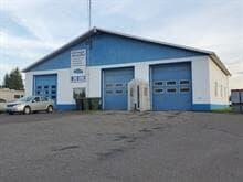 Bâtisse commerciale à vendre à Deschaillons-sur-Saint-Laurent, Centre-du-Québec, 265, Route  Marie-Victorin, 23323877 - Centris.ca