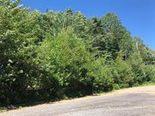 Terrain à vendre à Val-David, Laurentides, Rue  Christian, 27894390 - Centris.ca