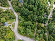 Terrain à vendre à Sainte-Anne-des-Lacs, Laurentides, Chemin des Criquets, 20453122 - Centris.ca