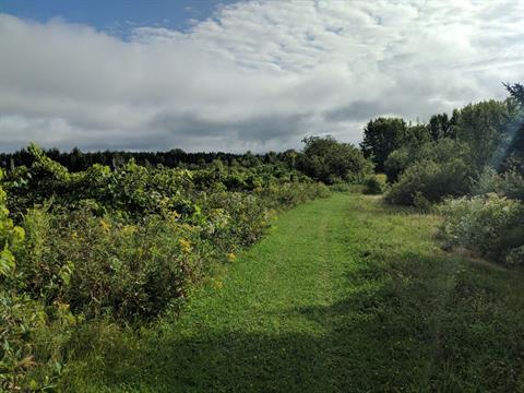 Land for sale in Saint-Georges, Chaudière-Appalaches, Route  Cloutier, 27482339 - Centris.ca