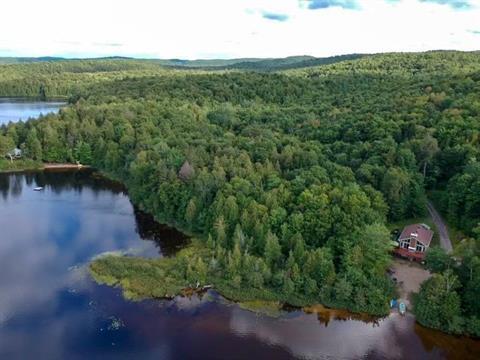 Chalet à vendre à Duhamel, Outaouais, 140, Chemin du Lac-du-Chevreuil, 25290820 - Centris.ca
