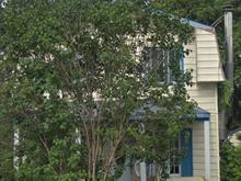 Maison à vendre à Chomedey (Laval), Laval, 137, 69e Avenue, 17312260 - Centris.ca