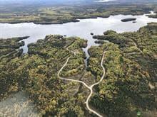 Terrain à vendre à Péribonka, Saguenay/Lac-Saint-Jean, 371, Chemin du Réservoir, 11857684 - Centris.ca