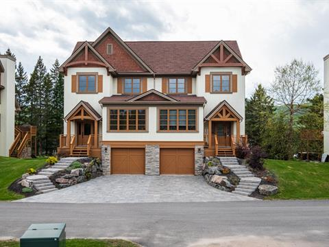 House for rent in Mont-Tremblant, Laurentides, 140, Allée du Héron, 13064350 - Centris.ca