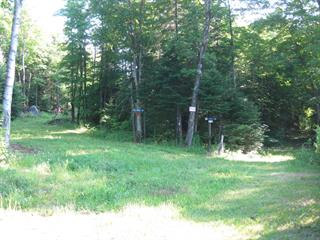 Lot for sale in Morin-Heights, Laurentides, Chemin du Lac-Écho, 17011029 - Centris.ca