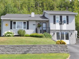 Maison à vendre à Témiscaming, Abitibi-Témiscamingue, 24, Rue  Valcourt, 25172729 - Centris.ca