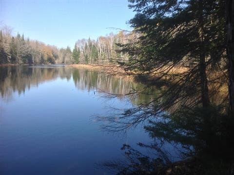 Lot for sale in Lac-des-Plages, Outaouais, Chemin du Lac-de-la-Carpe, 25523259 - Centris.ca