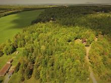 Terre à vendre à Saint-Georges-de-Windsor, Estrie, 4e Rang, 25349952 - Centris.ca
