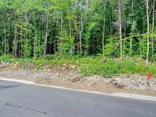 Lot for sale in Stoneham-et-Tewkesbury, Capitale-Nationale, 46, Chemin  Raymond-Lortie, 27151081 - Centris.ca