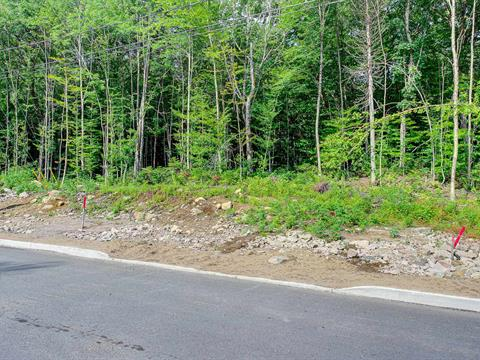 Lot for sale in Stoneham-et-Tewkesbury, Capitale-Nationale, 48, Chemin  Raymond-Lortie, 20129595 - Centris.ca