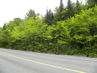 Lot for sale in Rawdon, Lanaudière, Chemin du Lac-Gratten, 16346548 - Centris.ca