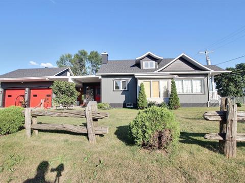 Maison à vendre à Pierreville, Centre-du-Québec, 119, Rue  Georges, 9043299 - Centris.ca