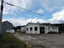 Maison à vendre à Saint-Stanislas (Saguenay/Lac-Saint-Jean), Saguenay/Lac-Saint-Jean, 257, Rang  Alphonse, 19803632 - Centris.ca