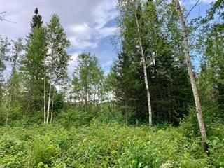 Lot for sale in Saint-Honoré, Saguenay/Lac-Saint-Jean, 2, Chemin de la Rive, 27587212 - Centris.ca