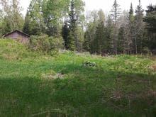 Terrain à vendre à Gracefield, Outaouais, 94, Chemin de Blue Sea, 16688753 - Centris.ca