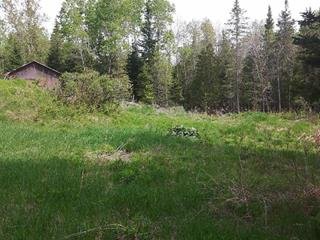 Lot for sale in Gracefield, Outaouais, 94, Chemin de Blue Sea, 16688753 - Centris.ca