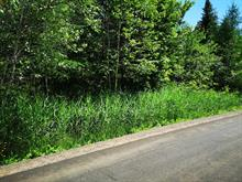 Terrain à vendre à Saint-Jean-de-Matha, Lanaudière, Chemin de la Belle-Montagne, 23709353 - Centris.ca
