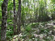 Terre à vendre à Lac-Drolet, Estrie, 312, 2e Rang, 25638433 - Centris.ca