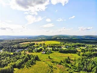 Farm for sale in Cleveland, Estrie, 213Y, Chemin  Healy, 10224672 - Centris.ca