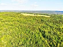 Farm for sale in Cleveland, Estrie, 220A, Route  116, 15557032 - Centris.ca