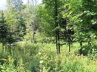 Lot for sale in Harrington, Laurentides, Chemin du Gros-Rocher, 9665753 - Centris.ca