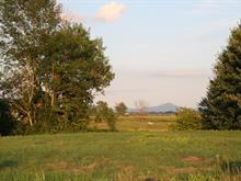 Terrain à vendre à Pike River, Montérégie, Rang des Ducharme, 13636572 - Centris.ca