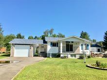 Maison à vendre à Val-des-Bois, Outaouais, 113, Chemin  Lajeunesse, 20942067 - Centris.ca