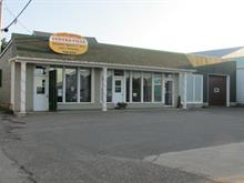 Bâtisse commerciale à vendre à Cap-Chat, Gaspésie/Îles-de-la-Madeleine, 25, Rue  Notre-Dame Est, 20143682 - Centris.ca
