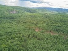 Land for sale in Sheenboro, Outaouais, Rue  Non Disponible-Unavailable, 22249045 - Centris.ca