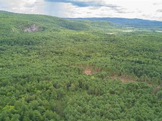 Terre à vendre à Sheenboro, Outaouais, Rue  Non Disponible-Unavailable, 22249045 - Centris.ca