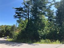 Lot for sale in Sainte-Anne-des-Lacs, Laurentides, Chemin des Criquets, 20453122 - Centris.ca