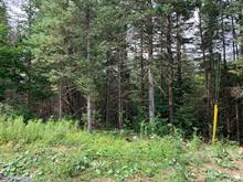 Lot for sale in Morin-Heights, Laurentides, Rue de l'Escale, 15613273 - Centris.ca