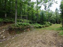 Lot for sale in Sainte-Mélanie, Lanaudière, Avenue de la Champs-Vallons, 22955876 - Centris.ca