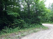 Lot for sale in Wentworth-Nord, Laurentides, Chemin du Grand-Lac-Noir, 11462833 - Centris.ca