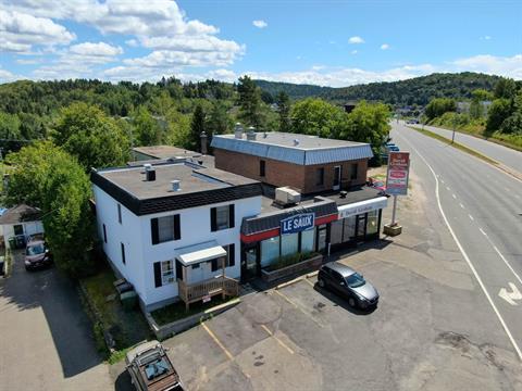 Immeuble à revenus à vendre à Sainte-Agathe-des-Monts, Laurentides, 78 - 86, boulevard  Norbert-Morin, 26904868 - Centris.ca