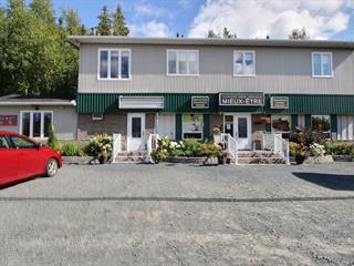 Bâtisse commerciale à vendre à Rouyn-Noranda, Abitibi-Témiscamingue, 2039 - 2043, Avenue  Granada, 14747682 - Centris.ca