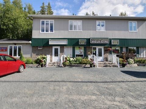 Bâtisse commerciale à vendre in Rouyn-Noranda, Abitibi-Témiscamingue, 2039 - 2043, Avenue  Granada, 14747682 - Centris.ca