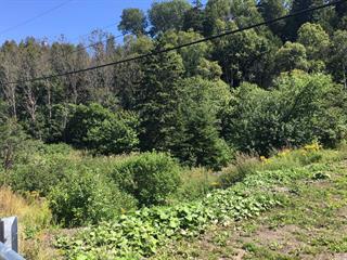 Lot for sale in Notre-Dame-du-Portage, Bas-Saint-Laurent, Route de la Montagne, 25309637 - Centris.ca
