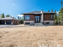 House for sale in Shannon, Capitale-Nationale, 23, Rue  O'Hearn, 23630553 - Centris.ca